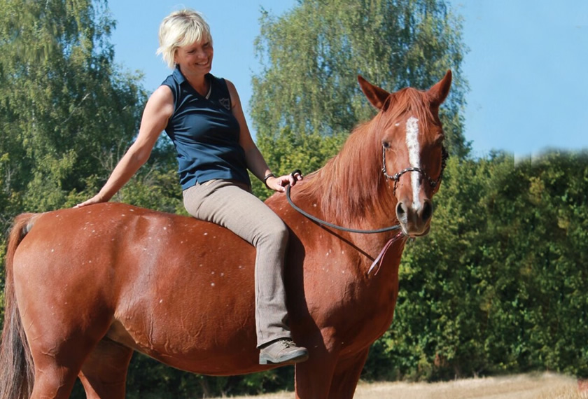EMLeben-EMLeute: Effektive Mikroorganismen bei meinem Pferd