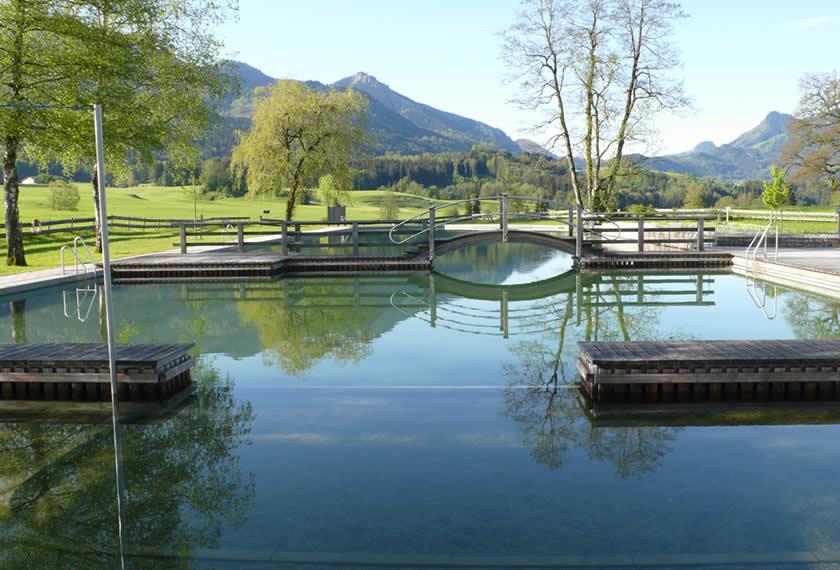 Naturteich mit EM sanieren im Herbst - klares Wasser im Frühjahr? Jetzt im Herbst reagieren.