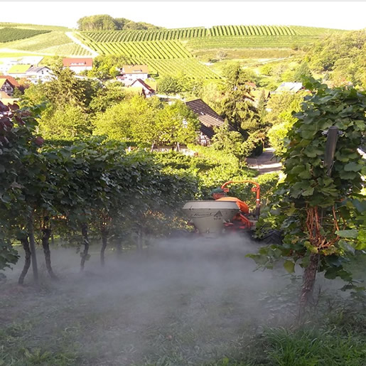 EM Weinbau Gesteinsmehl ausbringen
