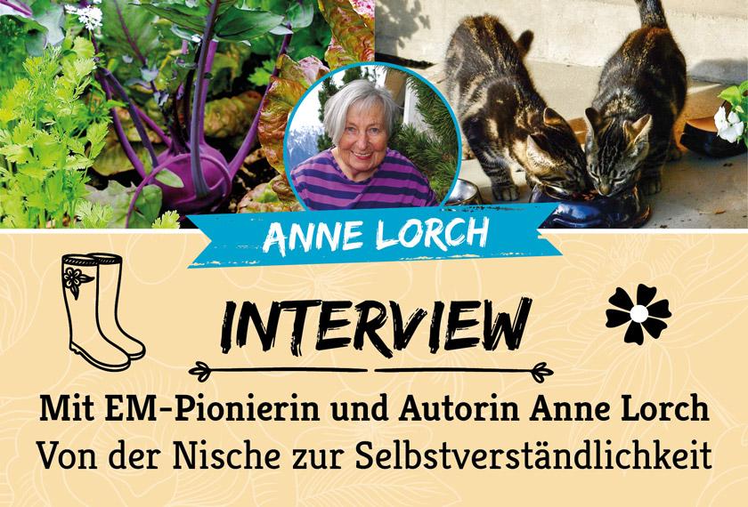 Interview mit EM-Pionierin und Autorin Anne Lorch über EM