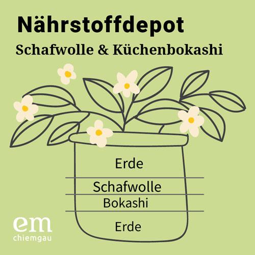 Topfpflanzen richtig düngen mit Schafwolle & Küchenbokashi - Urban Gardening